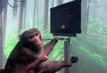 Photo of ELON MUSK SHARES VIDEO OF HIS NEURALINK MONKEY PLAYING VIDEO GAMES WITH ITS MIND